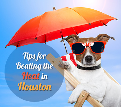 Tips-for-Beating-the-Heat-in-Houston